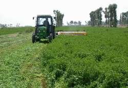 Уборка урожая кормовой люцерны