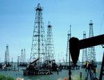 Цена на нефтепродукты может повлиять на развитие биотопливной отрасли